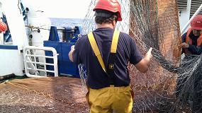 Foto de La pesca de anchoa del Cantábrico en 2019 prevé un reclutamiento medio-alto