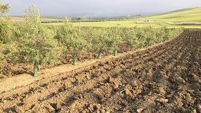 Foto de La Renta Agraria crece un 3,4% hasta 29.955 millones de euros
