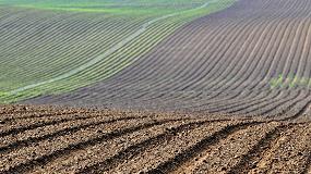 Foto de España expone en Bruselas su decidida apuesta por el cultivo de la remolacha