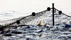 Foto de Nace una red de trabajo para mejorar la competitividad y el desarrollo sostenible de la industria pesquera en el Cantábrico Noroeste