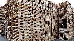 Foto de WPP y Maderas Ariño fomentan un estudio sobre los embalajes y palets de madera