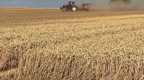 Foto de La superficie de cereal otoño-invierno 2019 cae un 0,4%