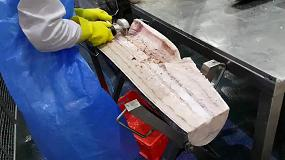 Foto de Cruells asiste a Seafood Expo Global con su equipamiento para pescado