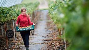 Foto de Ayudas para impulsar el papel de las mujeres en el desarrollo rural
