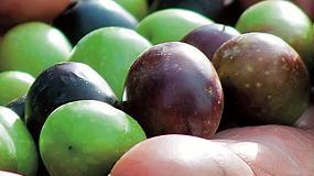 Foto de FMC despliega una amplia oferta para el olivar