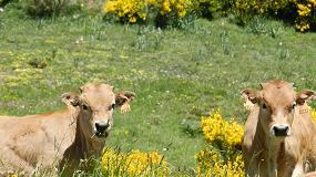 Foto de España, ejemplo de adaptación de la agricultura frente al cambio climático