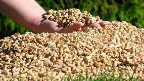 Foto de Andalucía lidera el sector de la biomasa de calefacción por autonomías