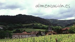 Foto de Definidas las superficies autorizadas para nuevas plantaciones de viñedo