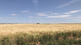 Foto de Asaja pide la exención en el royalty de las semillas debido a las pérdidas por la sequía