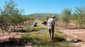 Foto de Los agricultores pueden salvar a los polinizadores y beneficiarse de ello