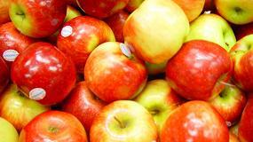 3 disques Nanology fruits et légumes Savers