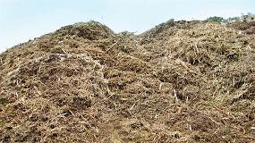 Foto de Instalação e exploração de novas centrais de valorização de biomassa: publicado decreto que altera regime especial
