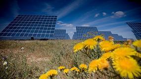 Foto de Deloitte lança estudo sobre impacto da eletricidade de origem renovável em Portugal