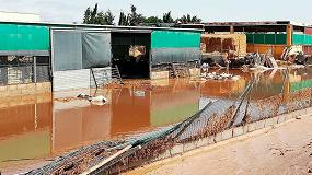 Foto de Asaja reclama la declaración de zona catastrófica para las provincias afectadas por el temporal