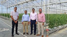 Foto de Cajamar y Signify firman un acuerdo para investigar el crecimiento de cultivos agrícolas con iluminación artificial