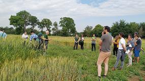 Foto de Neiker-Tecnalia muestra los últimos resultados de sus ensayos experimentales en cultivos ecológicos