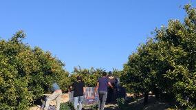 Foto de Se buscan agricultores interesados en diversificar cultivos