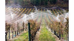 Foto de Del secano al regadío para que la viña se adapte al cambio climático