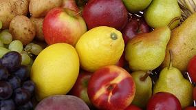 Foto de La exportación española de frutas y hortalizas en 2019 ascenderá a 13,5 millones de toneladas