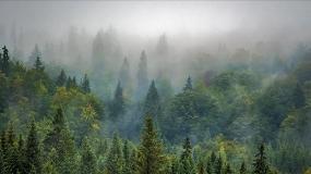 Foto de ONU quer que até 2030 as áreas protegidas cubram 30% da Terra