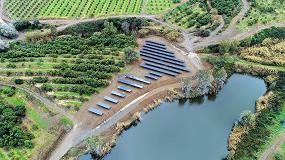 Foto de Powen ofrece un contrato de compraventa de energía dirigido al sector agrícola