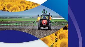 Foto de Nuevo herbicida de Syngenta para el control de malas hierbas en el girasol