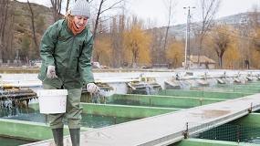 Foto de El proyecto INNOACUI busca el bienestar animal en la acuicultura