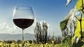 Foto de La sostenibilidad del vino desde todas sus vertientes