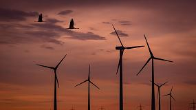 Foto de Setor Eólico e Repowering: a dimensão da oportunidade