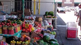 Foto de COAG pide que se autoricen los mercadillos de productos agrarios con las medidas sanitarias pertinentes