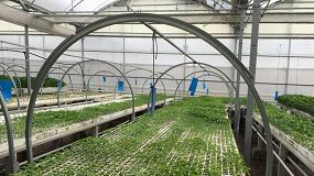 Foto de Los productores de semillas y plantas, preocupados ante el cierre de fronteras