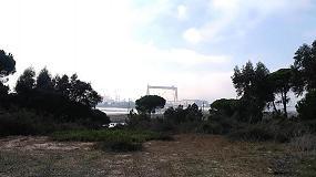 Foto de Estuário do Sado pode vir a ter uma central solar fotovoltaica de 12 megawatts