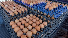 Foto de Una biopelícula para duplicar la durabilidad de los huevos