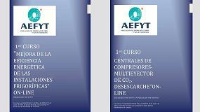 Foto de Aefyt programa para mayo dos cursos a través de su plataforma on-line