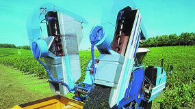 Foto de COAG CyL prevé un colapso del sector del vino y teme que los viticultores pierdan la campaña