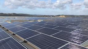 Foto de Jerónimo Martins investe mais de €1 milhão em produção de energia solar fotovoltaica para autoconsumo