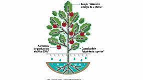 Foto de Nutrifluid Impulse, la solución de Fertiberia TECH para aumentar la rentabilidad de los cultivos