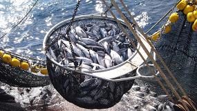 Foto de El origen sostenible de los productos pesqueros supera por vez primera al precio como factor de compra entre los consumidores europeos
