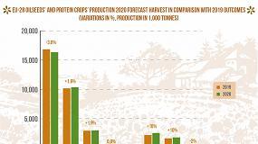 Foto de El cultivo de colza crece en España mientras en Europa su futuro es incierto