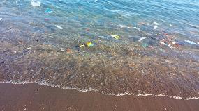 Foto de Projetos de prevenção e sensibilização para redução do lixo marinho financiados em €1 milhão