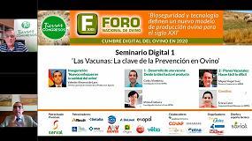 Foto de Arranca el Foro Nacional de Ovino con la sanidad como clave de la rentabilidad