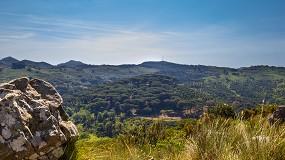 Foto de 400 mil euros reforçam a conservação da Tapada Nacional de Mafra