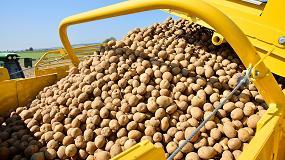 Foto de El cuidado de la patata, reto de la mecanización