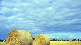 Foto de ASAJA considera que el mercado de cereales empieza a recuperarse y pide prudencia a los agricultores