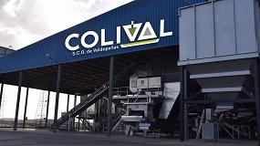 Foto de Colival, Mejor Almazara de España 2020