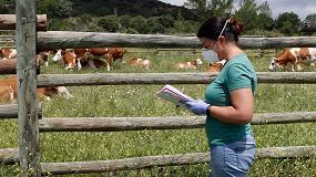 Foto de 'Cencerros digitales' para aportar sostenibilidad a la ganadería extensiva