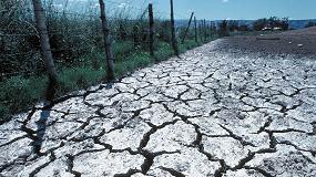 Foto de La salinización de los suelos agrícolas, una amenaza que ya afecta al 20% de la tierra cultivada