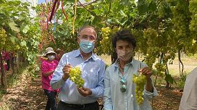 Foto de Ministra da Agricultura visita Vale da Rosa e Herdade do Paço