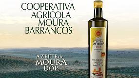Foto de Primeiro azeite do mundo com garrafa 100% reciclada e reciclável é português