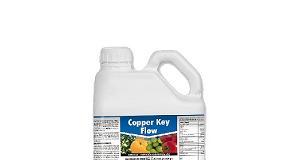 Foto de Copper Key Flow (ficha de produto)